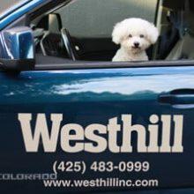 Rudy - Westhill Mascot